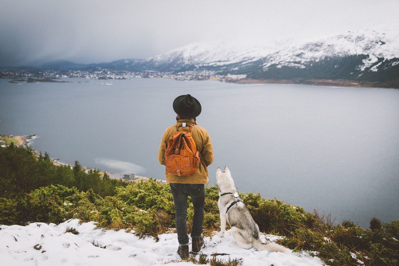 The traveler Norway Fjord Winter Nature Exploring Mountains Landscape Power In Nature Rural Travel Roadtrip EyeEm Best Shots Vscocam Outdoors Explore Ålesund, Norway Portrait Fresh on Market April 2016 The Great Outdoors - 2016 EyeEm Awards Fresh On Market 2016