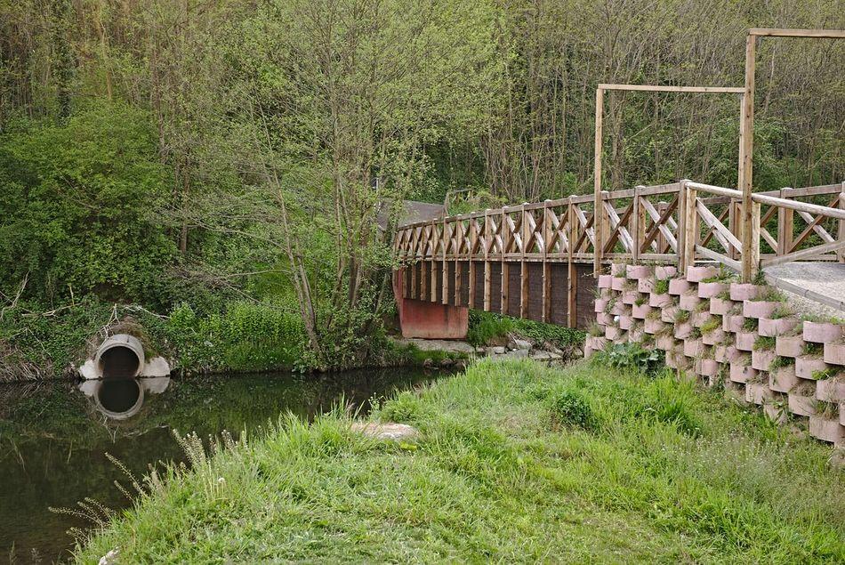 River Riverside EyeEm Best Shots - Landscape EyeEm Nature Lover EyeEm Best Shots Italy Landscape_photography Landscape_Collection