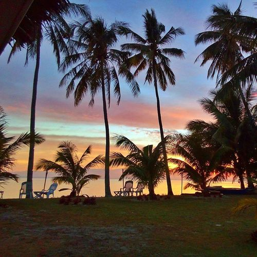 A view like this... Sunset Sanjuanian Bugwas Beach coconut crimson Siquijor MysticSiquijor visitPH2015 3Mar