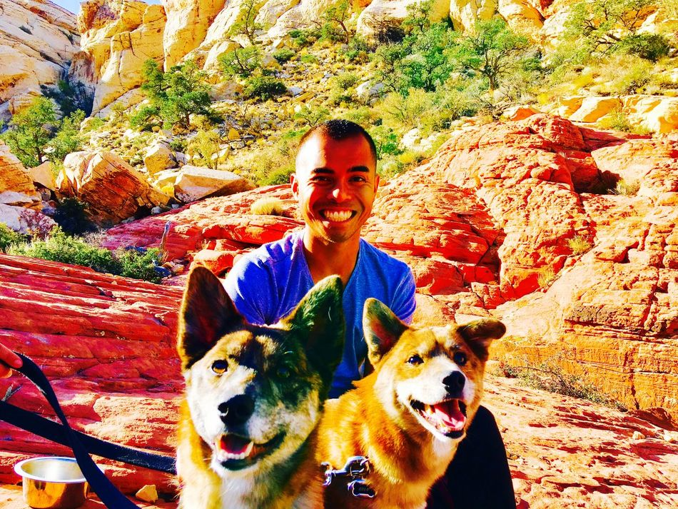 Happy Dogs make a happy June . Thanks Odin & Loki . 😁