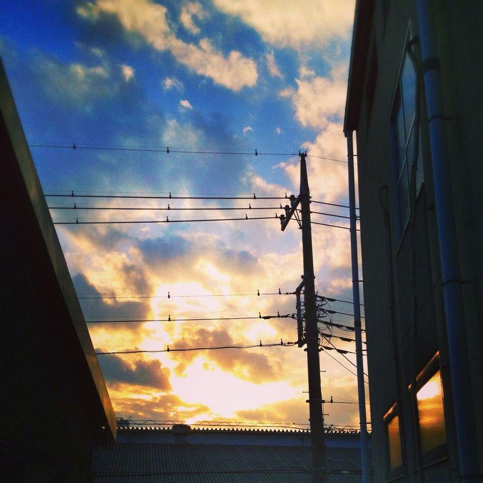 Beautiful Photo Sunny Afternoon