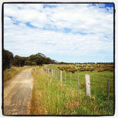 #bellarine #railtrail #fencepost #myhometown Fencepost Railtrail Myhometown Bellarine