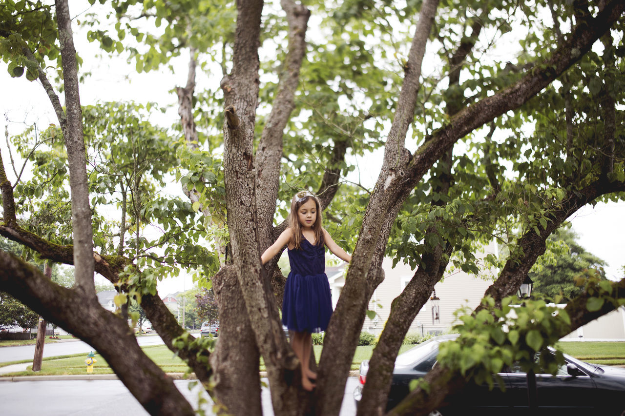 Girl On Tree By Road