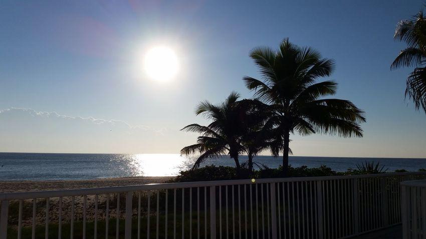 Beautiful day in south fla.... Pompano Beach