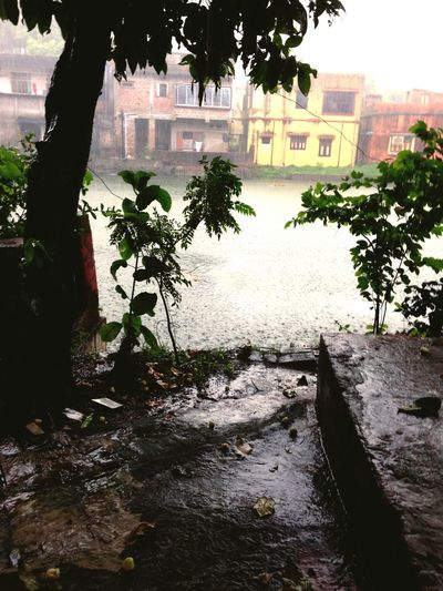 Summer Rain Monsoon In India