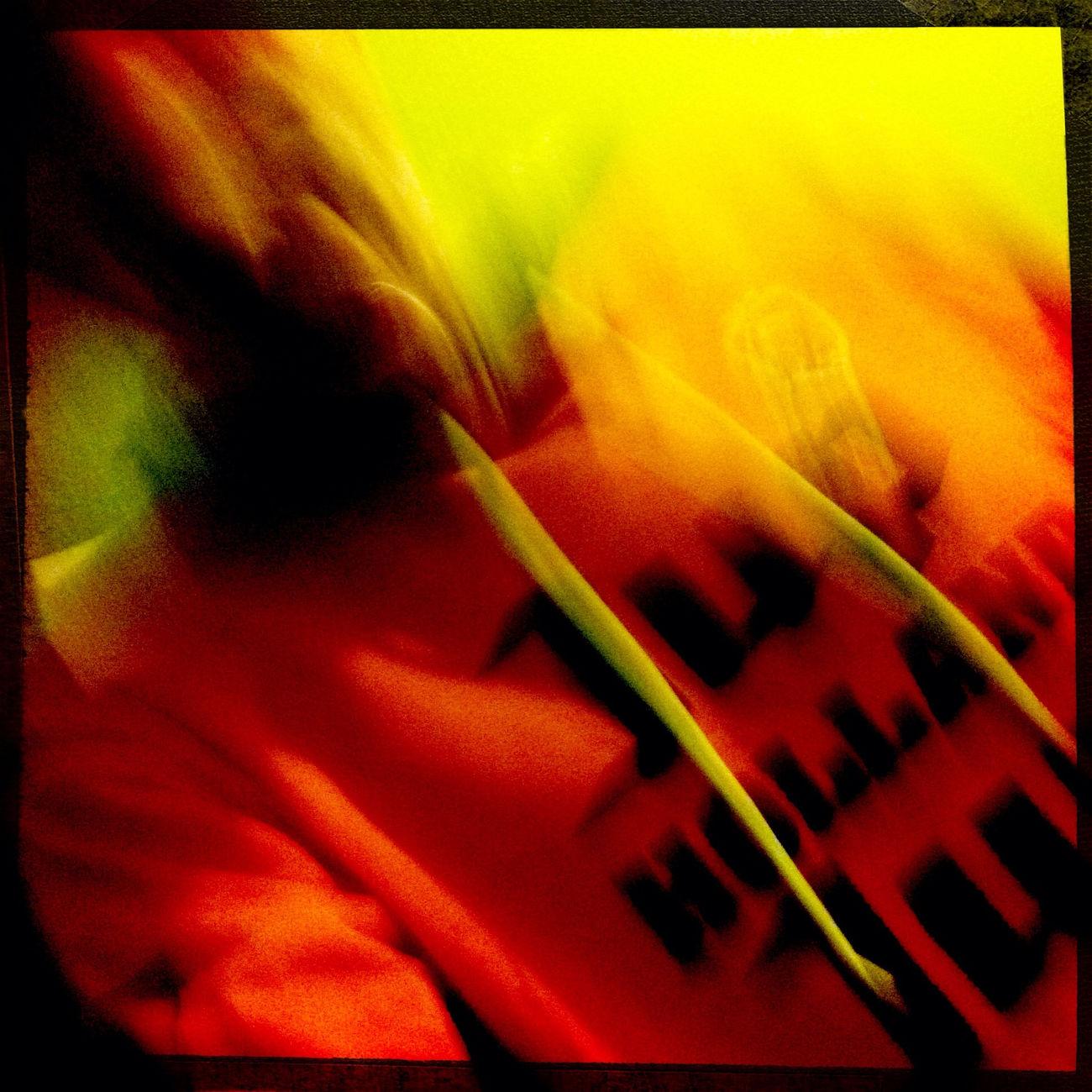 Self Portrait With Orange Shirt For Koniginnendag