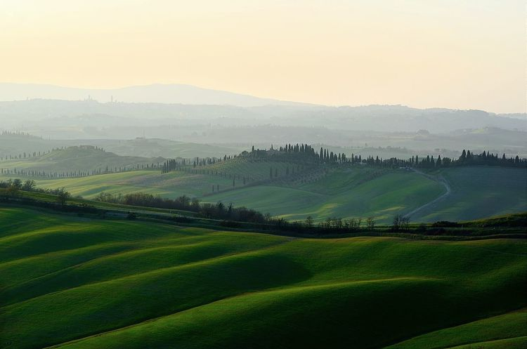 Tuscany Tadaa Community Taking Photos Landscapes Sunset Nikon D7000 Rural Landscape Siena Samyang EyeEm Best Shots Landscapes With WhiteWall