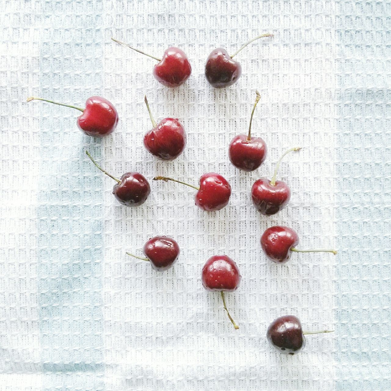 Beautiful stock photos of cherry, Cherry, Close-Up, Freshness, Fruit