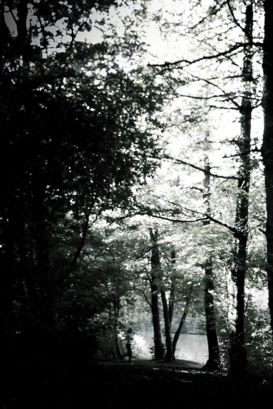 Jogging Blackandwhite Eye4photography