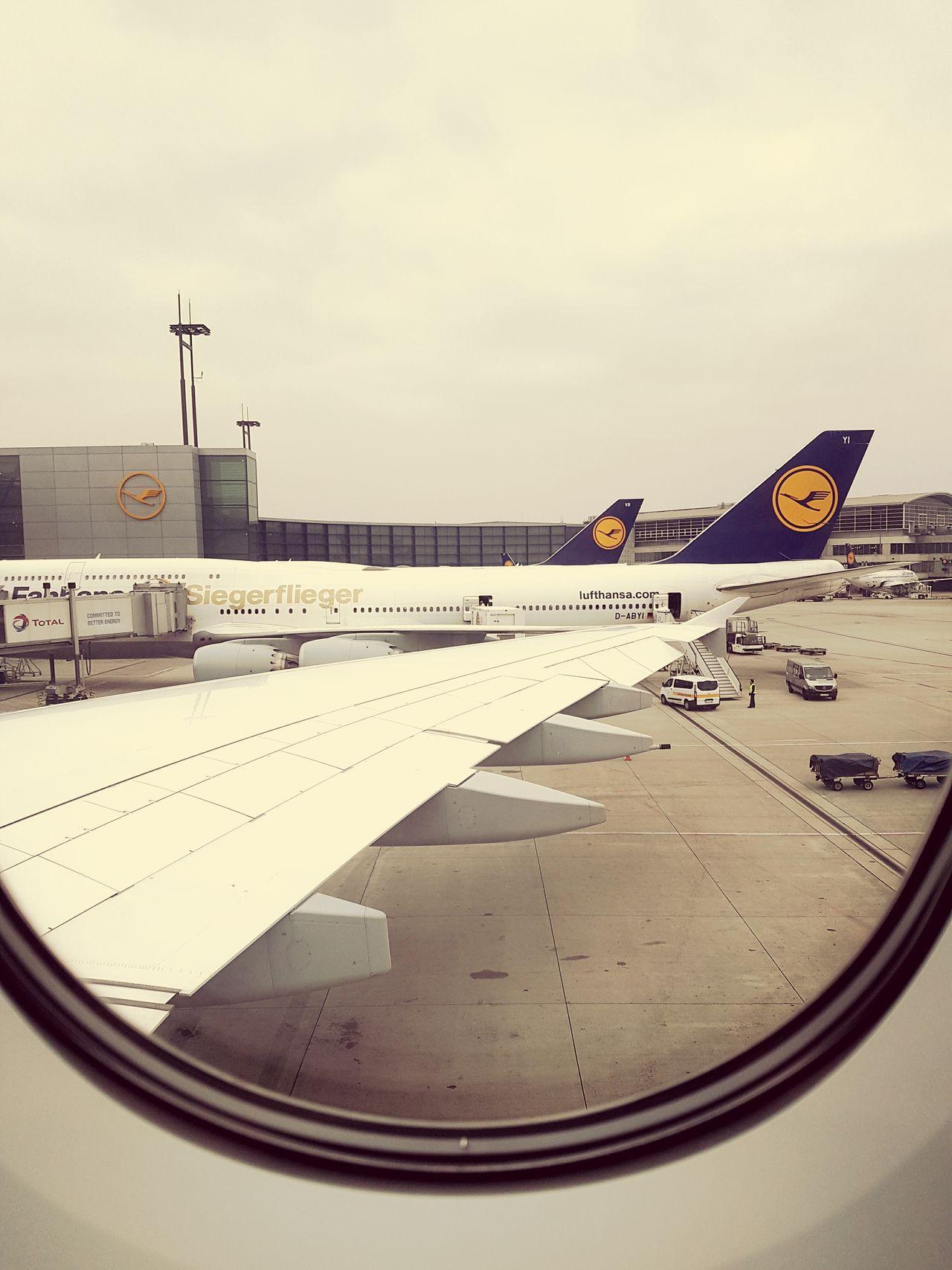 Airport Airport Runway Airbus Lufthansa Lufthansa A380 A380-800 Siegerflieger Flugzeug Fraport Frankfurt