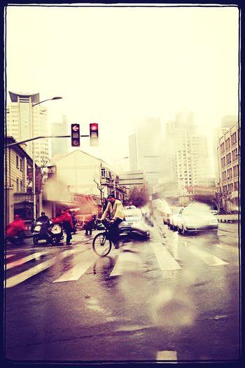 雨中即景,上海。