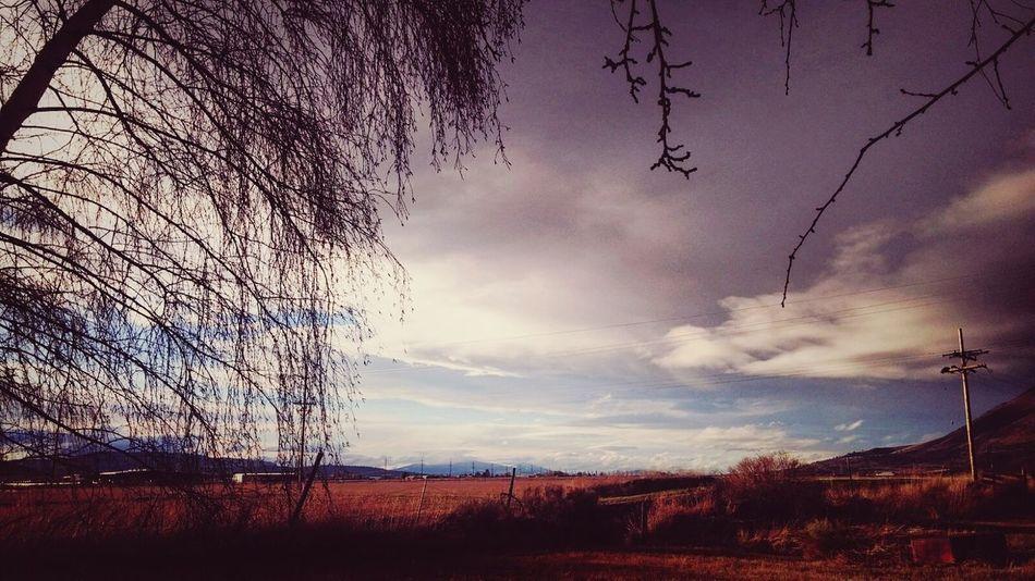 Love Country Living Eyemphotography Stormy Weather Storm Cloud Stormy Skies Outside Photography Love To Take Photos ❤ Beautiful Sky Amazing View Amazing_captures Eyem Gallery Eyemcaptured EyeMe Best Shot - Landscape Eyemphotos Oregon Oregon Beauty 👋😍