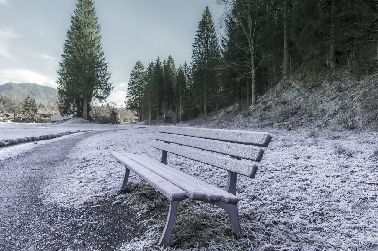 Empty Bench On Snow Covered Landscape