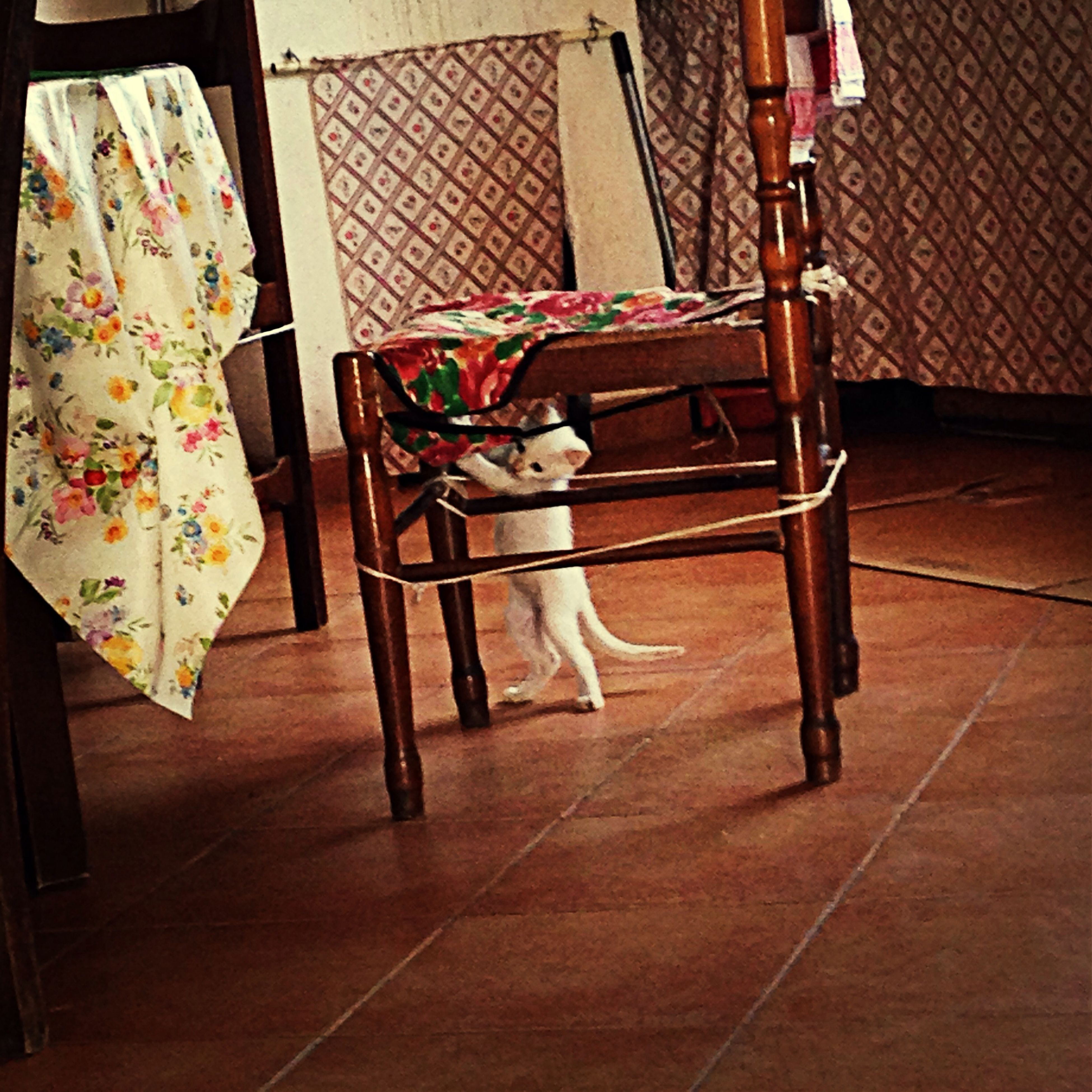 indoors, chair, flooring, tiled floor, table, absence, auto post production filter, home interior, childhood, day, furniture, clothing, no people, hardwood floor, wood - material, empty, high angle view, hanging, sitting, seat