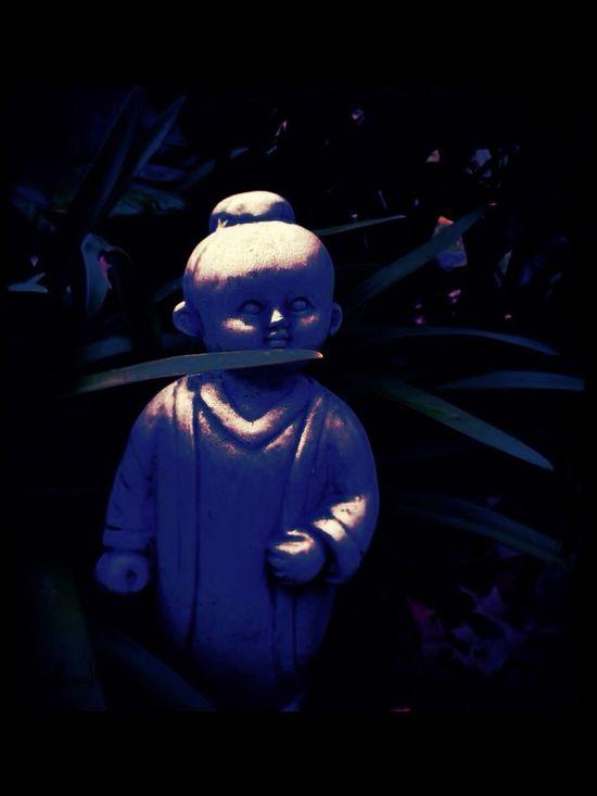 Buddha Boy Close To Midnight