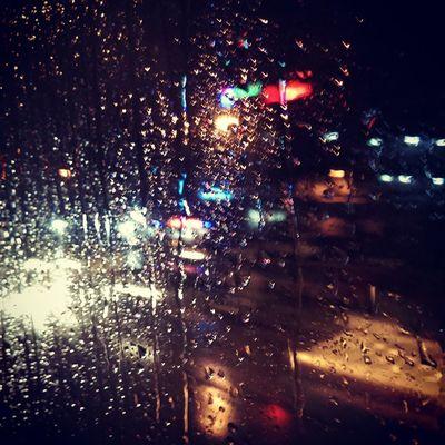 Aw Pune's sad to see me go :') Rain Bus Tuptuptup
