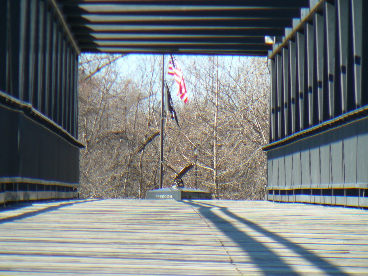 patriotism, flag, railing, day, no people, built structure, architecture, bare tree, outdoors, building exterior, stars and stripes, tree, sky
