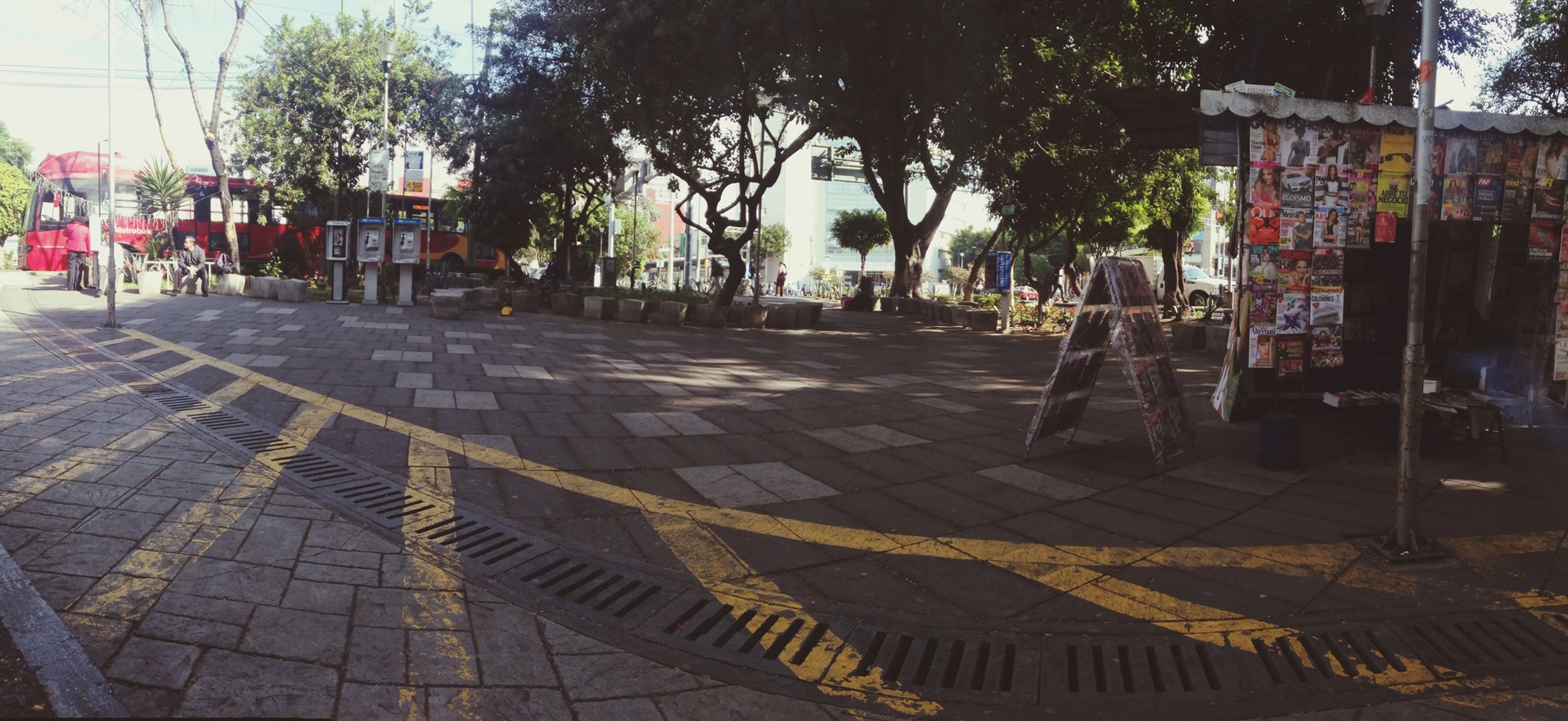 tree, building exterior, city, text, street, architecture, incidental people, built structure, sidewalk, sunlight, outdoors, city life, western script, shadow, communication, day, cobblestone, footpath, paving stone, non-western script