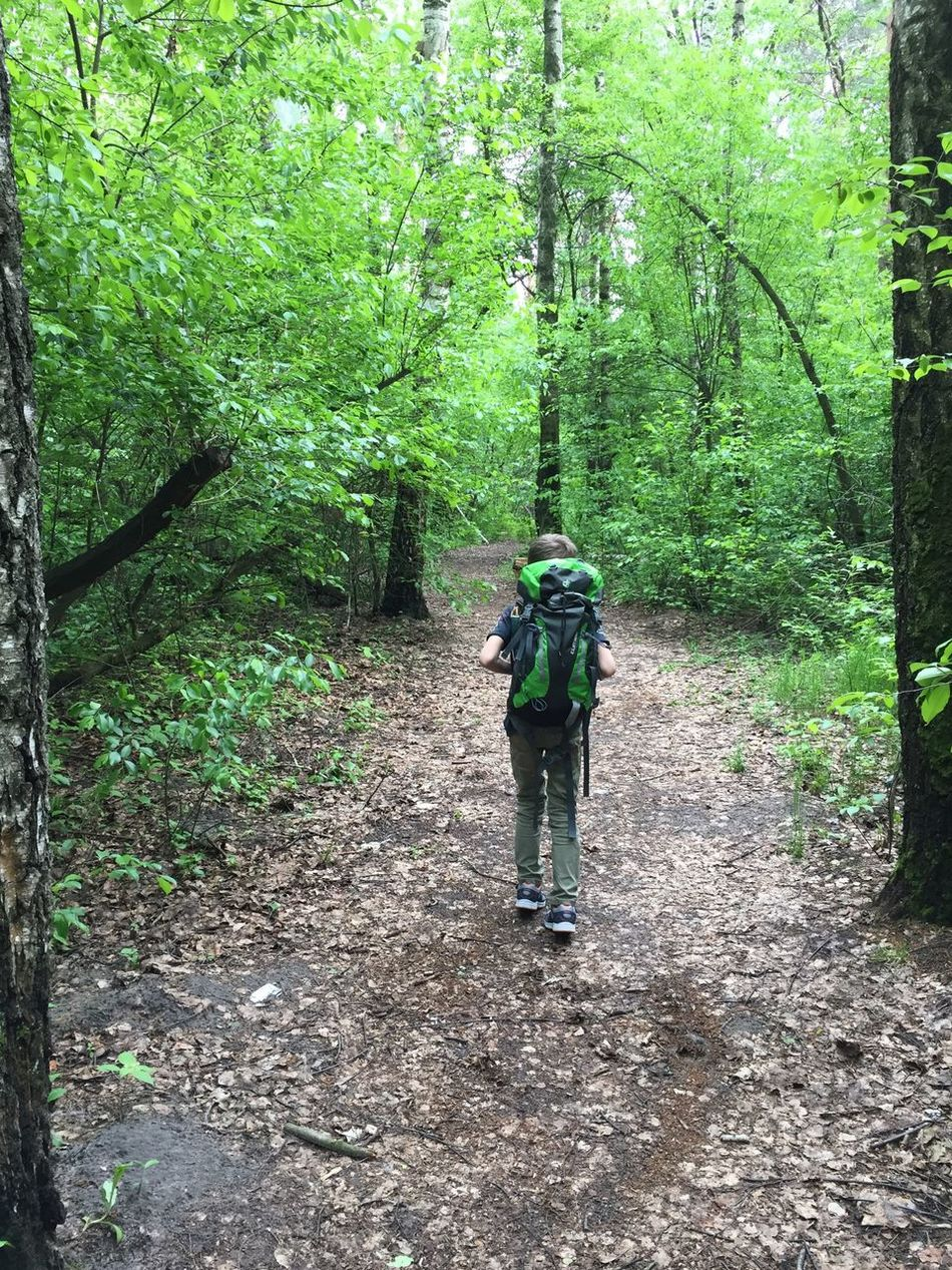 Forest Forestwalk Boy Camp Backpack Steps Step By Step Path Pathway On The Path Outdoors Nature Kid Alone Alone In Forest Trees