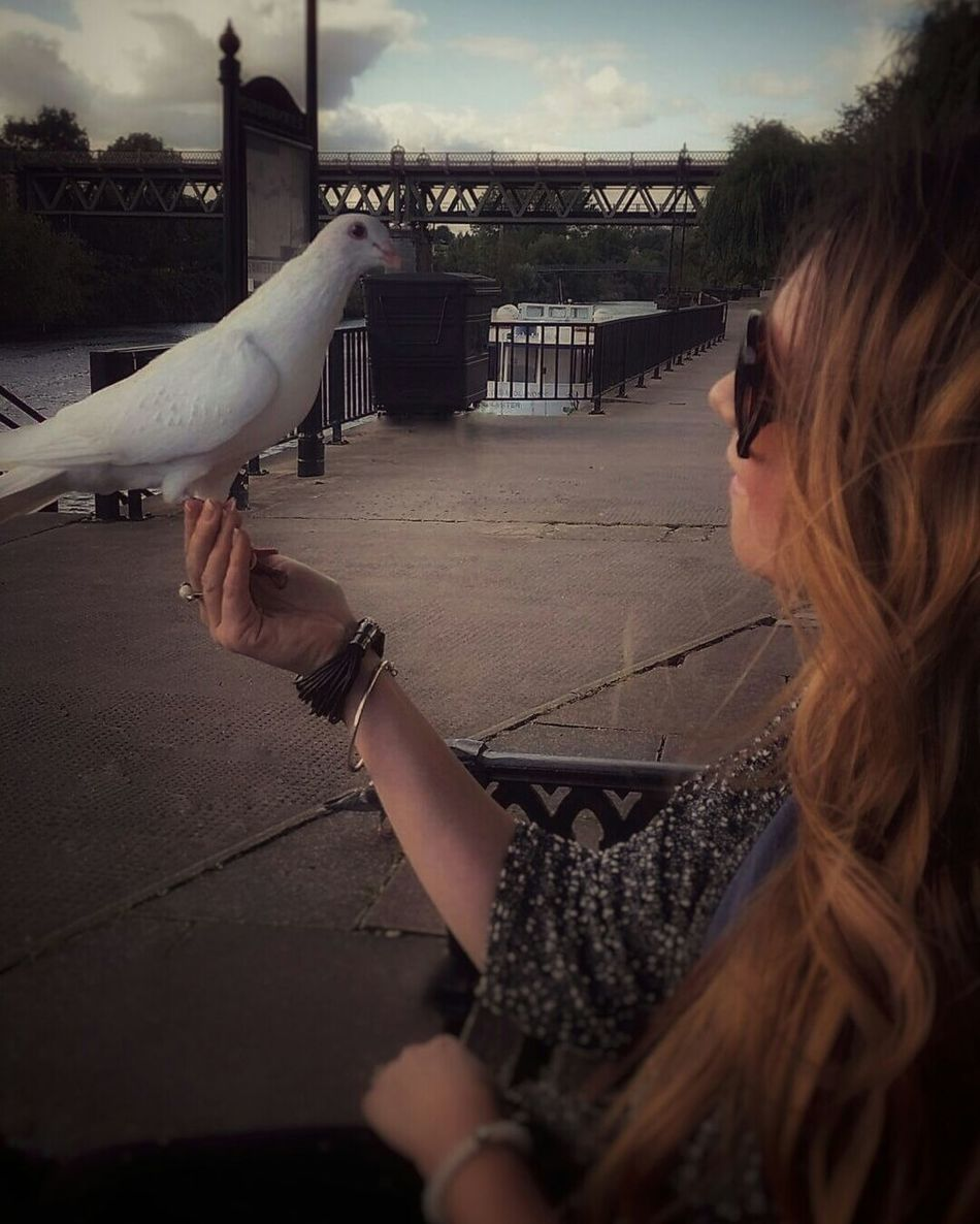 Made a new friend today! 😄 Person Day Nature Bird One Animal Beauty In Nature Human And Bird Pigeon Wildlife & Nature Wildlife Girl Woman Animal Lover Bird Lovers Tranquility Love Animals Birds In The Wild Animal