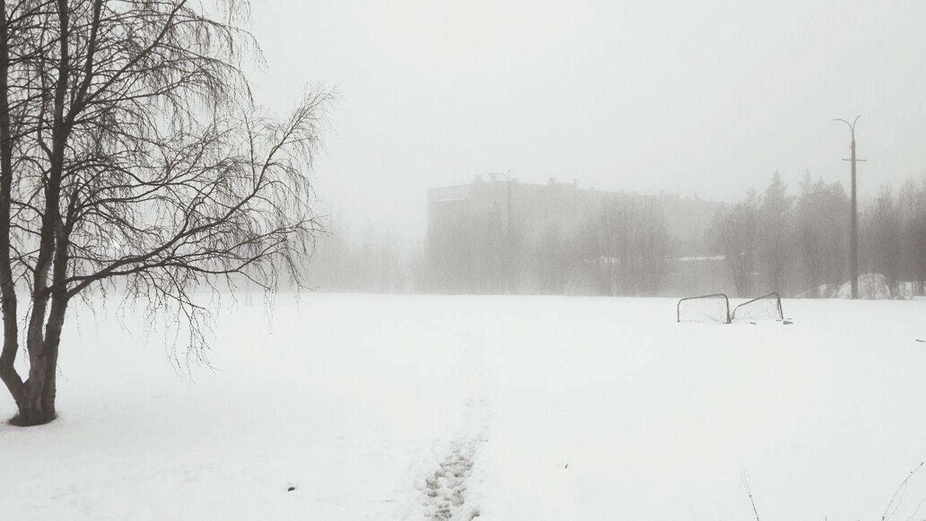 Общежитие АФ МГТУ.