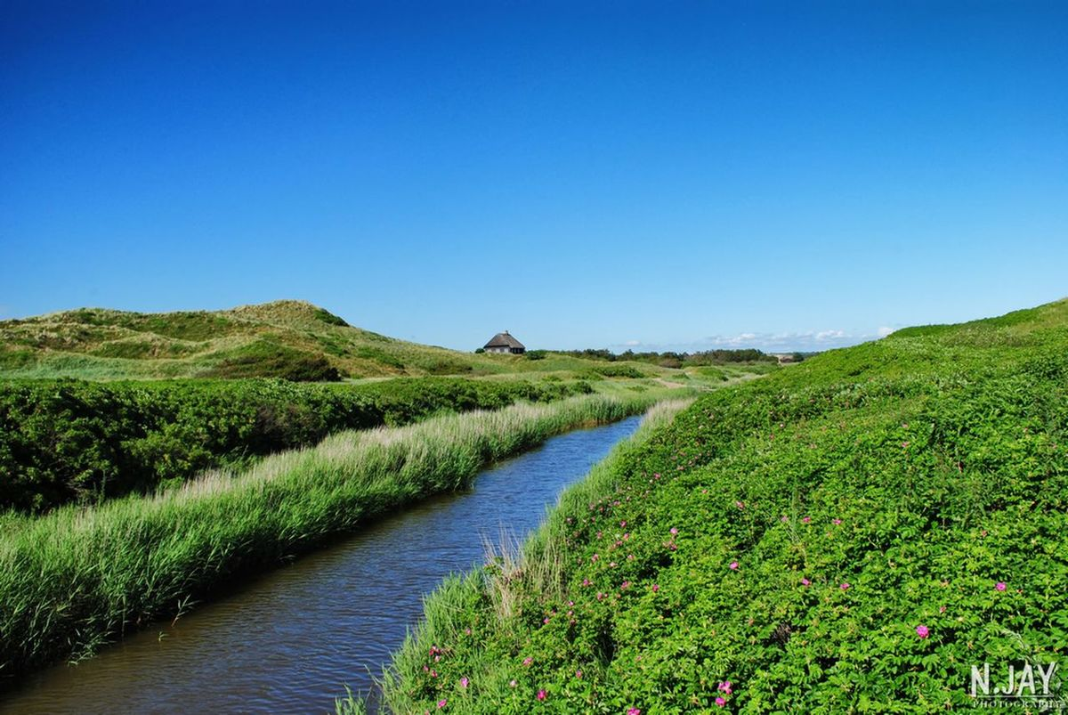 Henne Strand Denmark Denmark 🇩🇰 Scandinavia River Riverside River View Water Blue Water Blue Sky Summertime Landscape Landscapes Nature Beauty In Nature EyeEm Nature Lover Eye4photography  EyeEm Masterclass Beautiful Place Green Green Green!  Northsea Riverscape Single House House Nature_collection