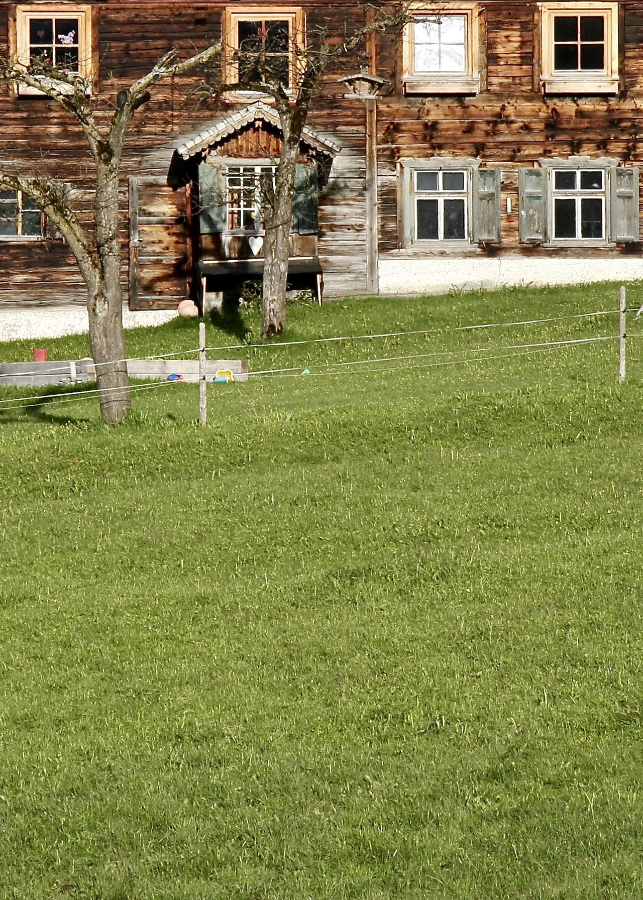 Agriculture Alps Architecture Building Exterior Built Structure Colors Fence Grass Green Color Greenery Growth Holiday House Meadow Nature Outdoors Residential Building Tannheimer Tal Tirol  Traditional Travel Tree Window Wooden