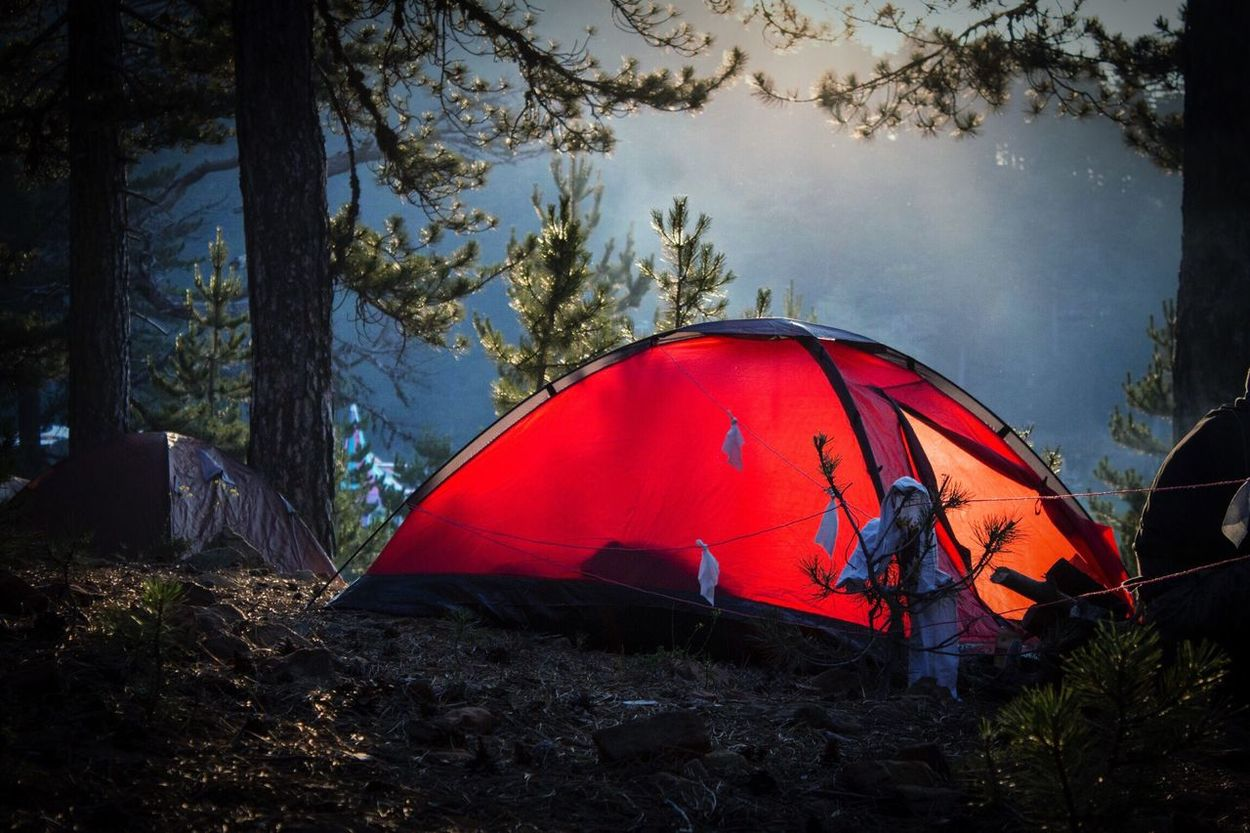 Home Home Sweet Home Tent Camping Camp Camping Trip! Camping In The Forest Forest Foggy Fog Early Morning Harmony Peace And Quiet Peaceful EyeEm Nature Lover EyeEm Best Shots Harmony With Nature Outdoors Outdoor Camping