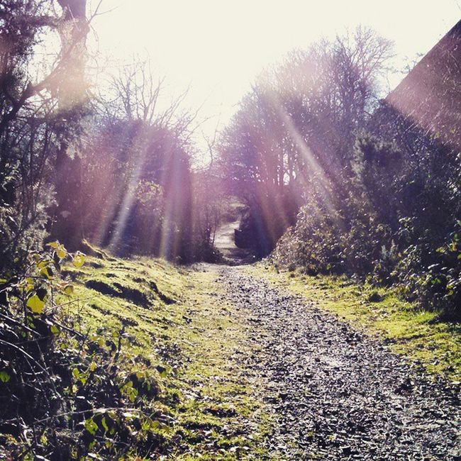 Prewley Roadtonowhere Walk Dartmoor countryside countrymouse devon devonlife