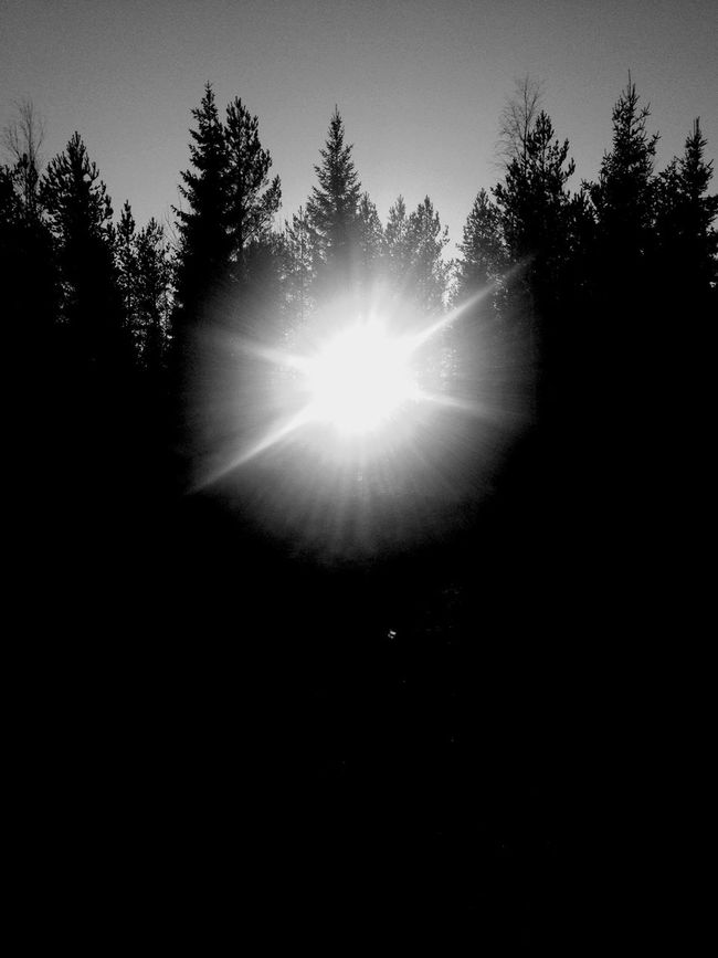 Magical light!I hope you have had beautiful holidays with you family and friends!! ❤️ Magic Blancoynegro Blackandwhite AMPt_community Winter