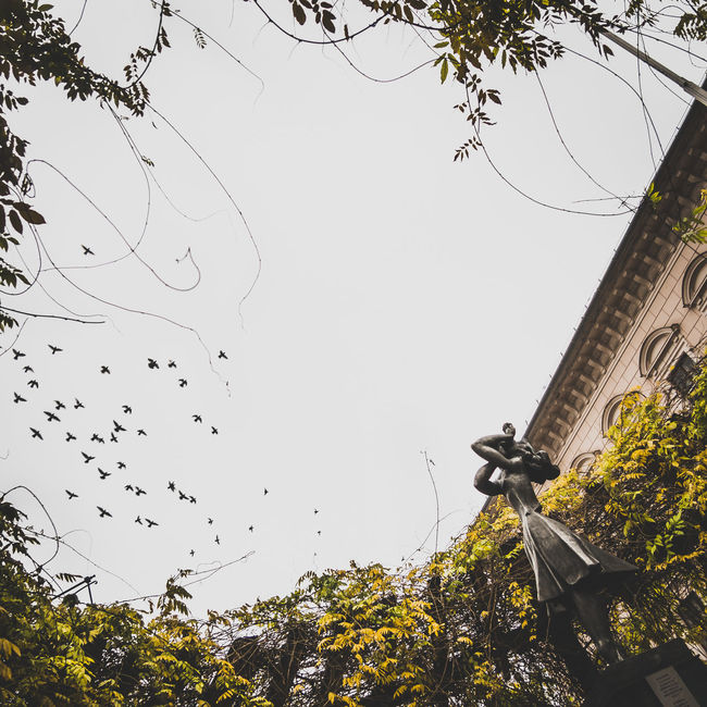 Anna Fountain Pigeons Sky Streetphotography Szeged First Eyeem Photo