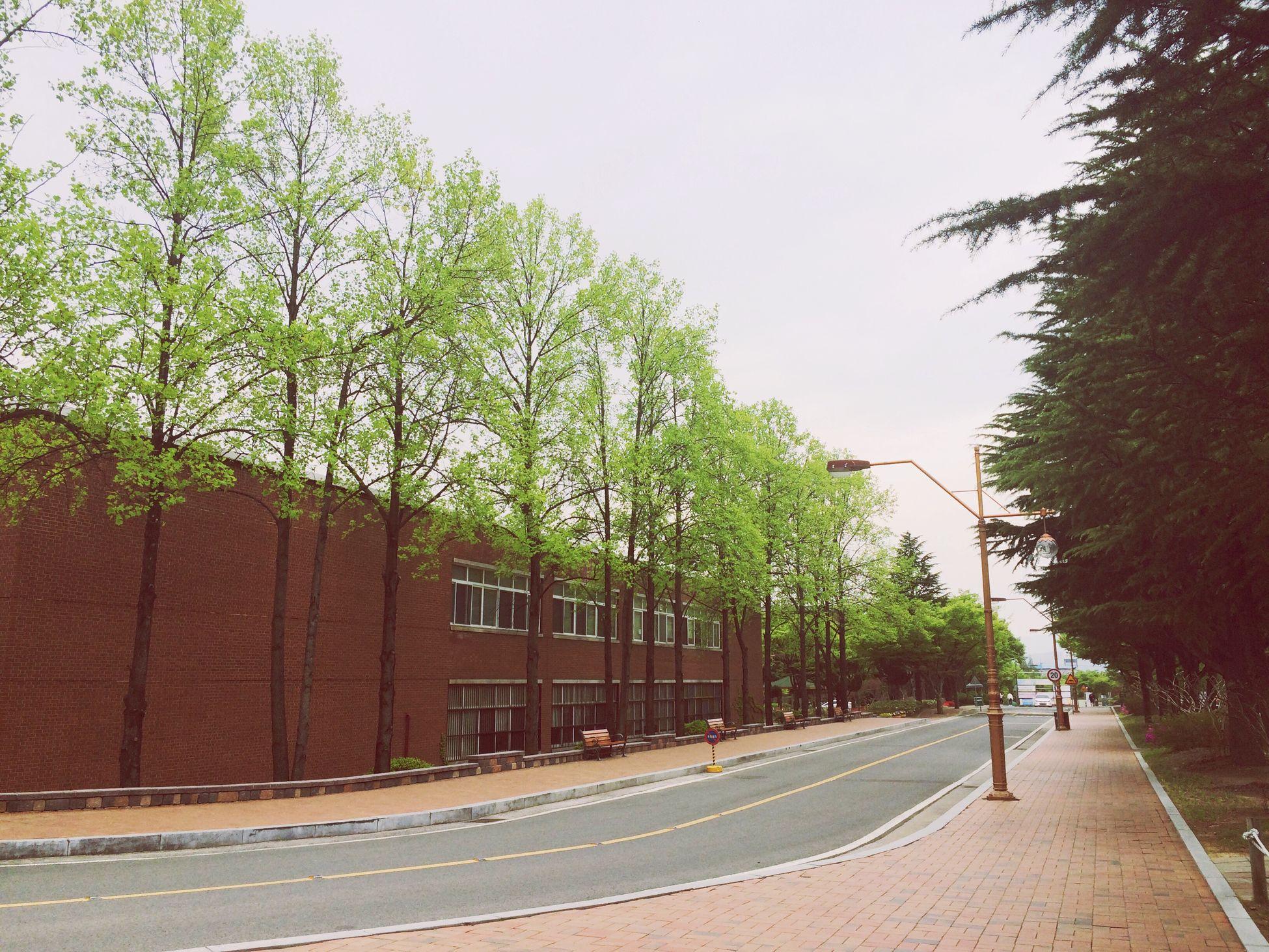 Way To Work Keimyung University