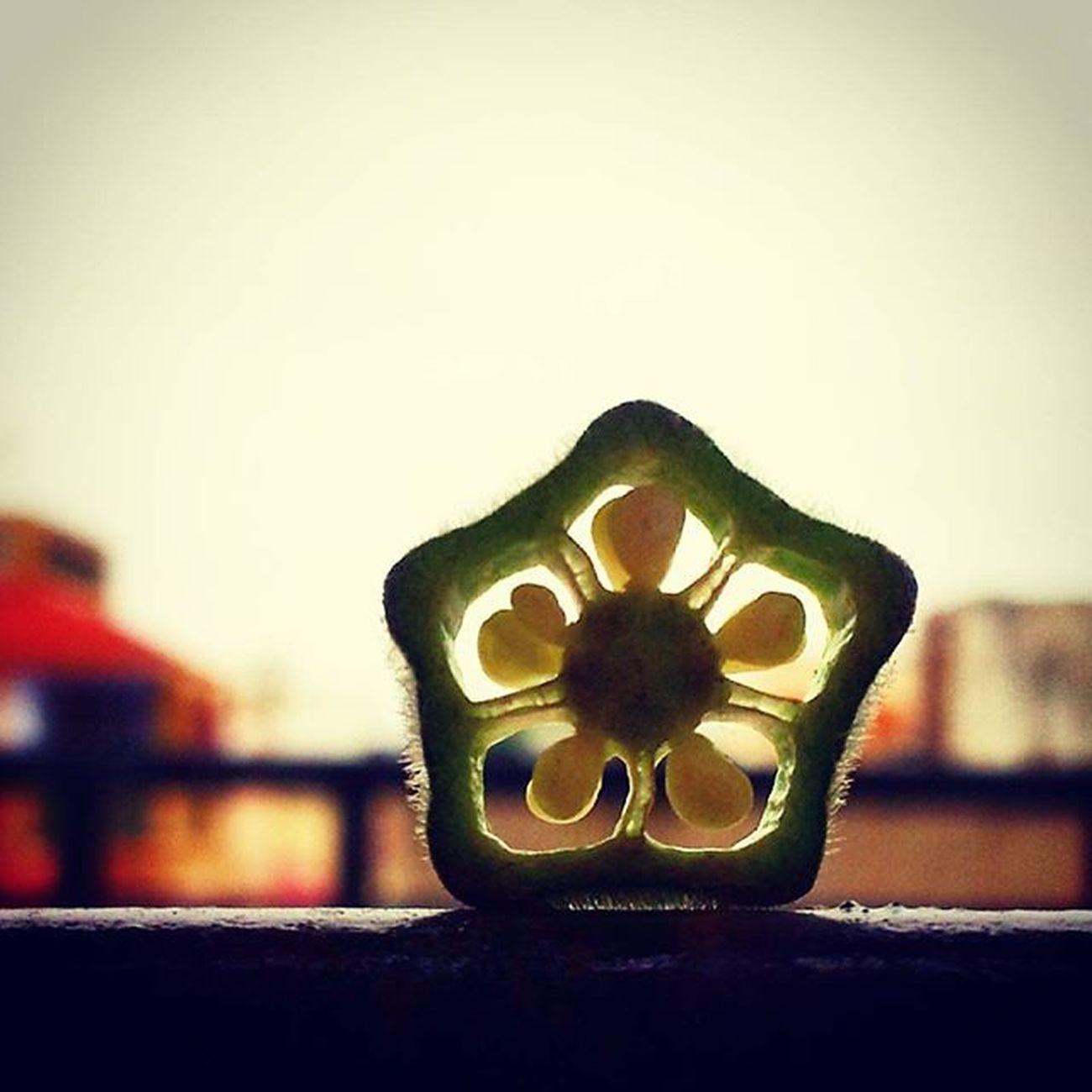 Ahmedabad_instagram Instagram_ahmedabad Desidiaries Uniqueclicks Soi TheLumians Lumiaclubindia Lumia730