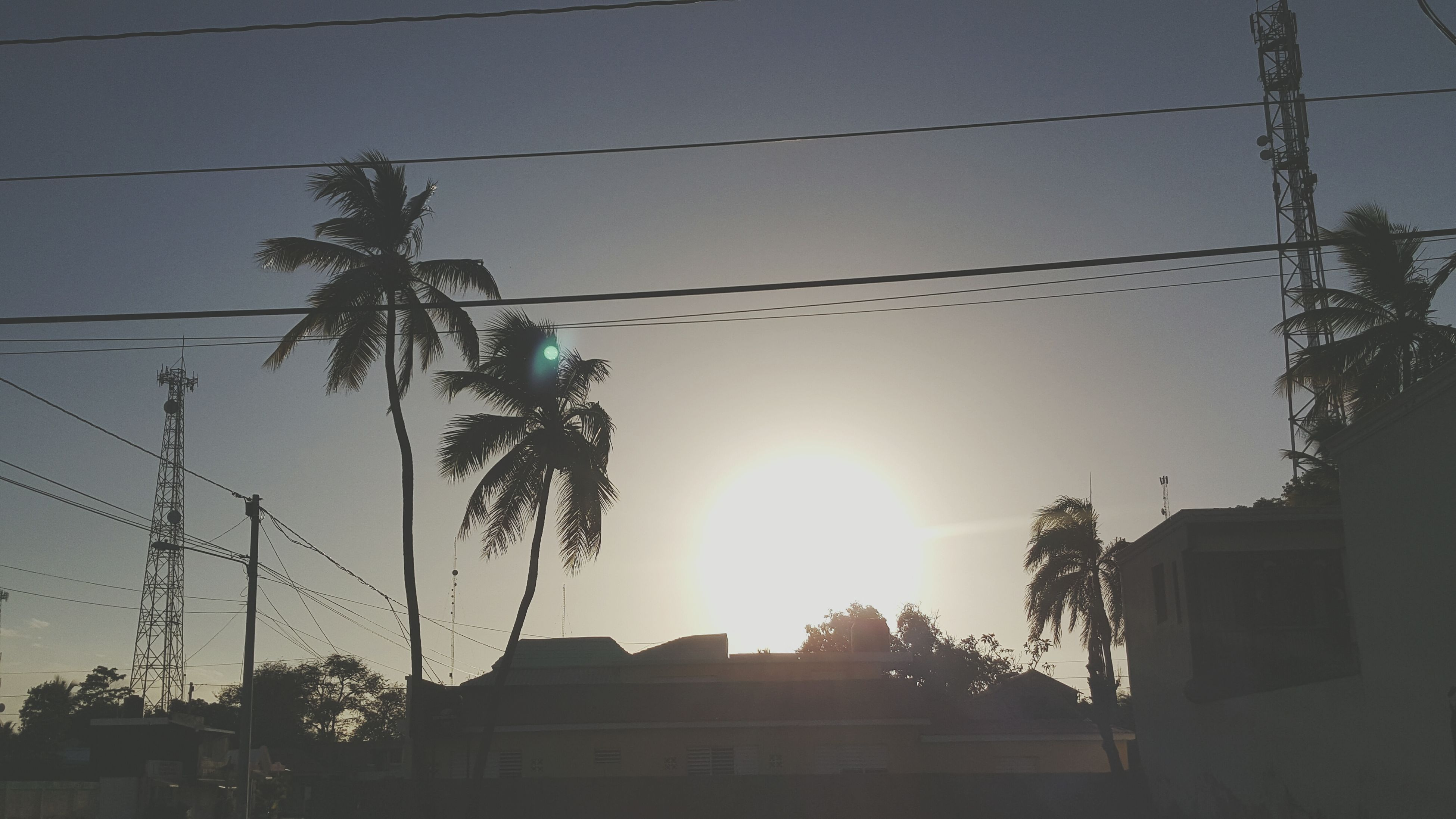 cable, palm tree, power line, tree, sun, electricity, low angle view, power supply, electricity pylon, outdoors, sunset, built structure, silhouette, architecture, clear sky, sunlight, sky, building exterior, no people, city, day, nature