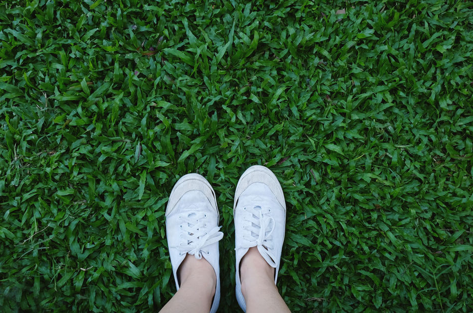 Beautiful stock photos of leinwand,  Adult,  Adults Only,  Canvas Shoe,  Day