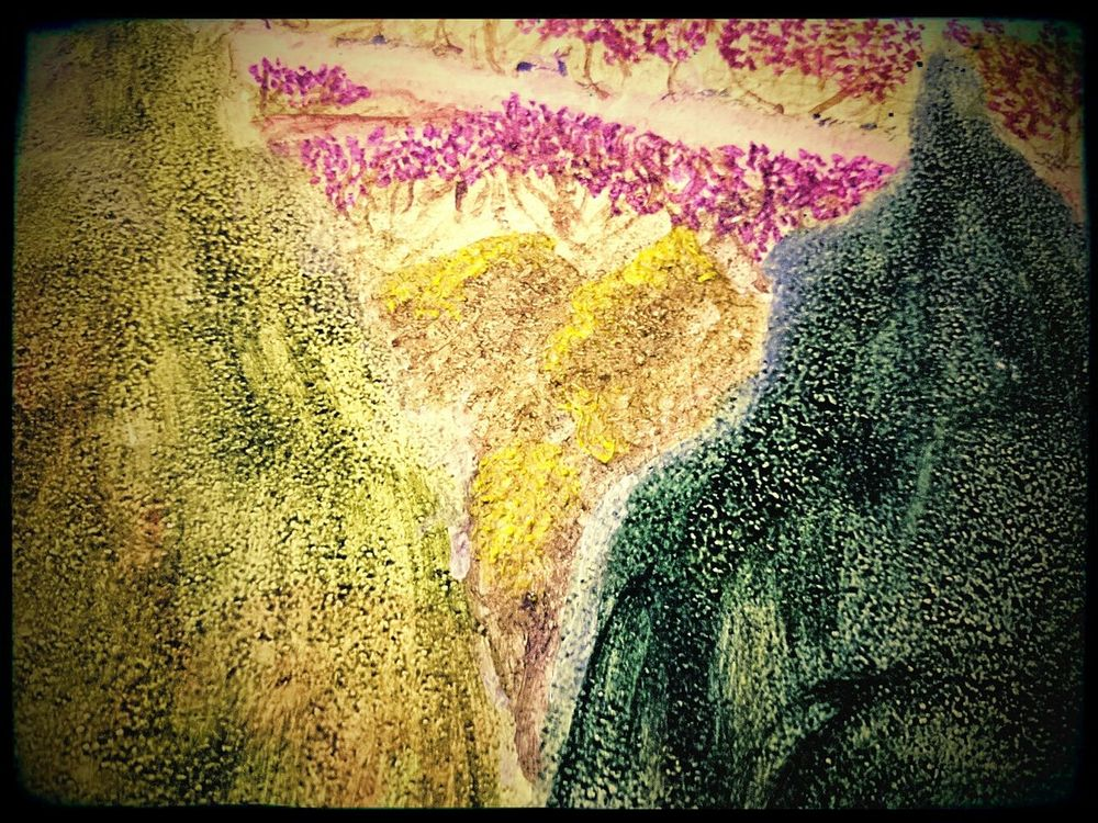 Taking Photos Colors Murales Mural Art