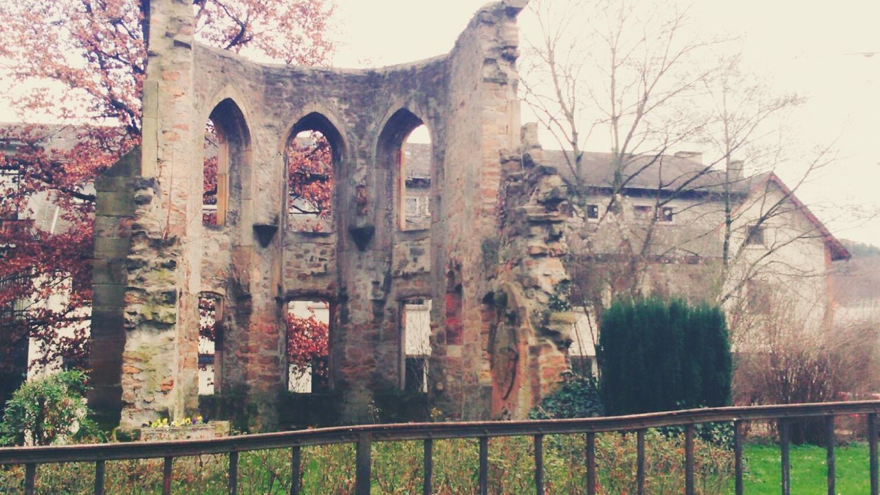 Ruins Architecture Tree Built Structure No People Outdoors Building Exterior Arch Nature History Beauty Marburg An Der Lahn Sony Xperia PixlrExpress Finding New Frontiers