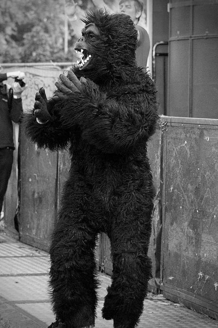 Gorilla (Ben) of Papa Shango @ the Strawberry Fair, Cambridge. https://www.facebook.com/papashangomusic/ Blackandwhite Blackandwhitephotography Cambridge CambridgeStrawberryFair Concert Day Fair Festival Focus On Foreground Gorilla Suit Monochrome Outdoor Outdoor Pictures People Portrait Music Brings Us Together