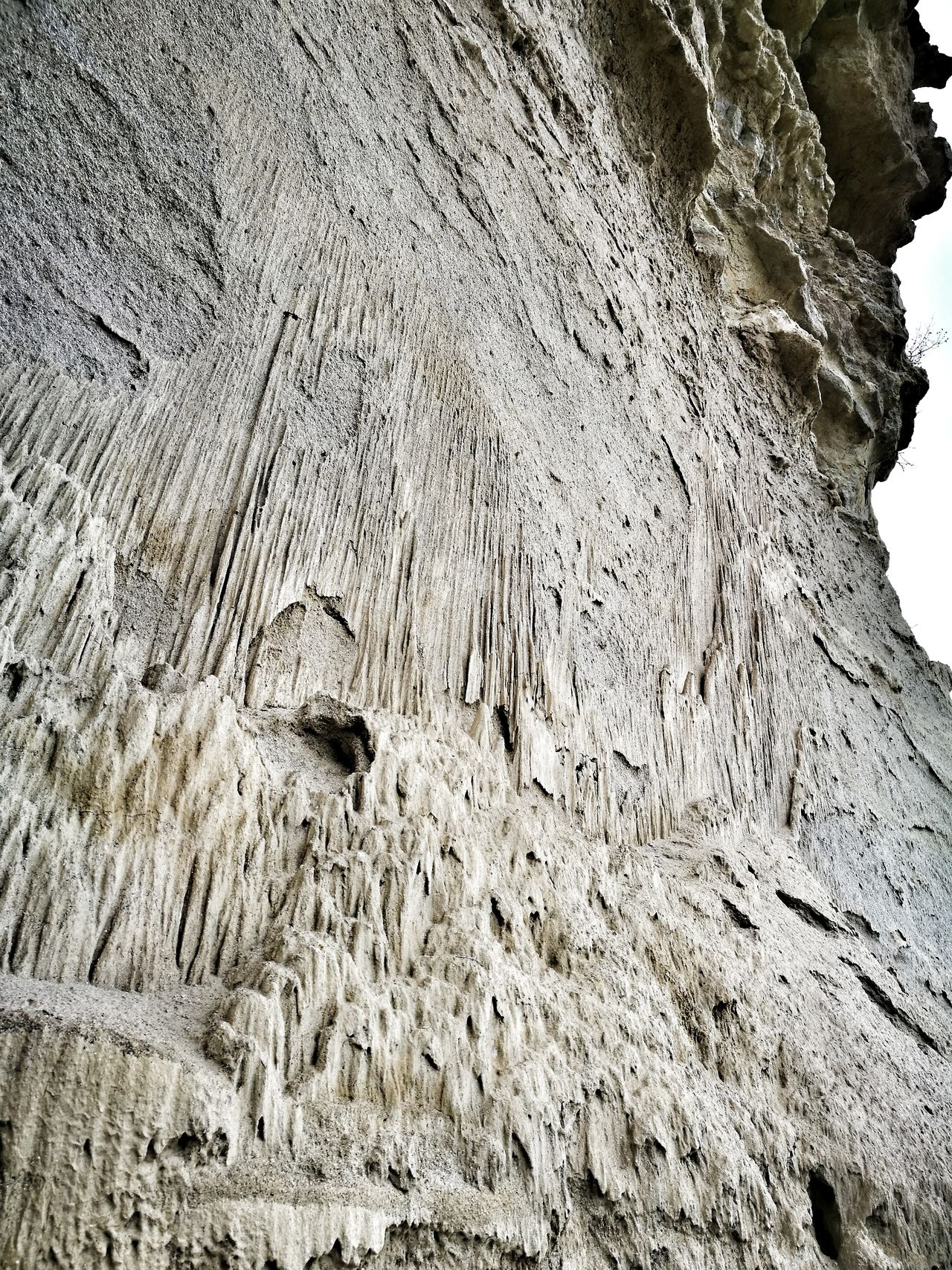 Sandberg Fosillized Rocks Fosiles Textured  Slovakia🇸🇰
