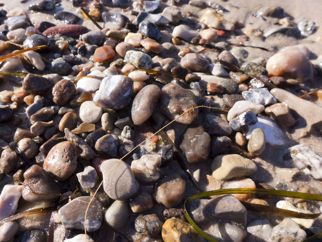 Backgrounds Baltic Baltic Sea Beach Close-up Coast Coastline Full Frame Heidkate Large Group Of Objects Nature No People Pebble Pebble Beach Rock Sand Sea Shore Stone - Object Water Waterfront Wischhafen