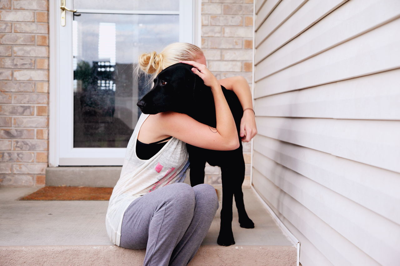 Beautiful stock photos of hunde, 20-24 Years, Affection, Animal Themes, Architecture
