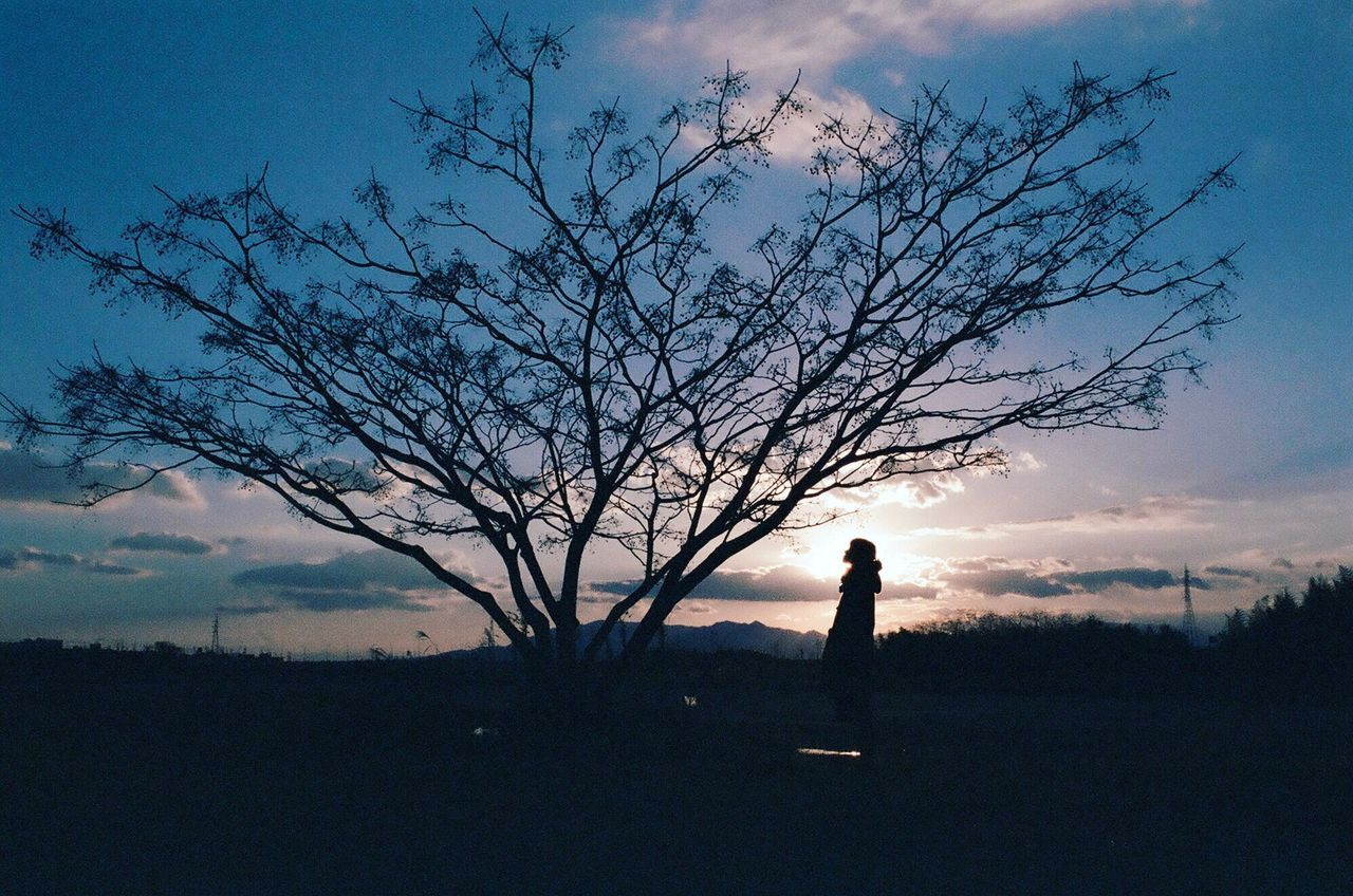 silhouette, sky, tree, nature, sunset, cloud - sky, standing, beauty in nature, field, real people, tranquil scene, one person, tranquility, outdoors, scenics, landscape, bare tree, full length, branch, men, day, people