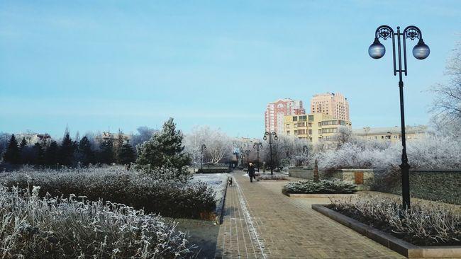 Красота сегодня) Meeting Winter Snow Relaxing