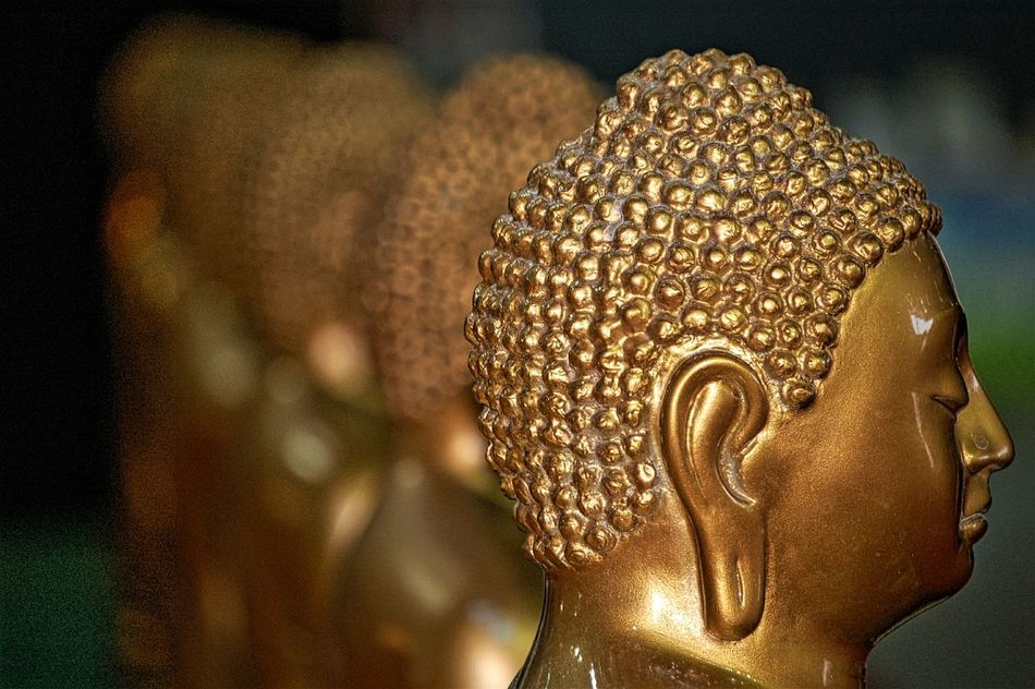Buddha Statues Gold Colored Statue Gold Spirituality Indoors  Oriental Festival Religion From My Point Of View Buddha Heads