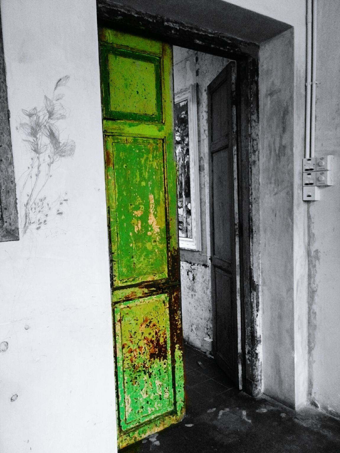 Built Structure Green Color Architecture No People Close-up Indoors  Architecture
