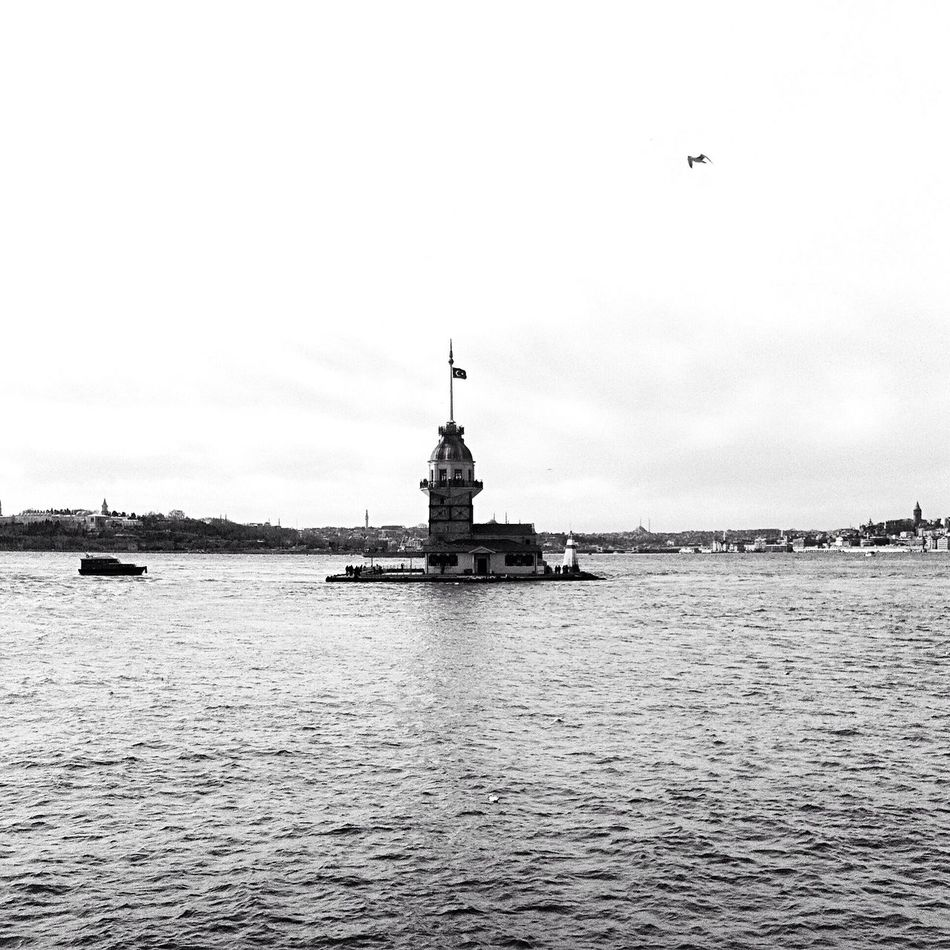 Taking Photos Black & White Nature Hellooo Eyem !  Istanbul Turkey Uskudar