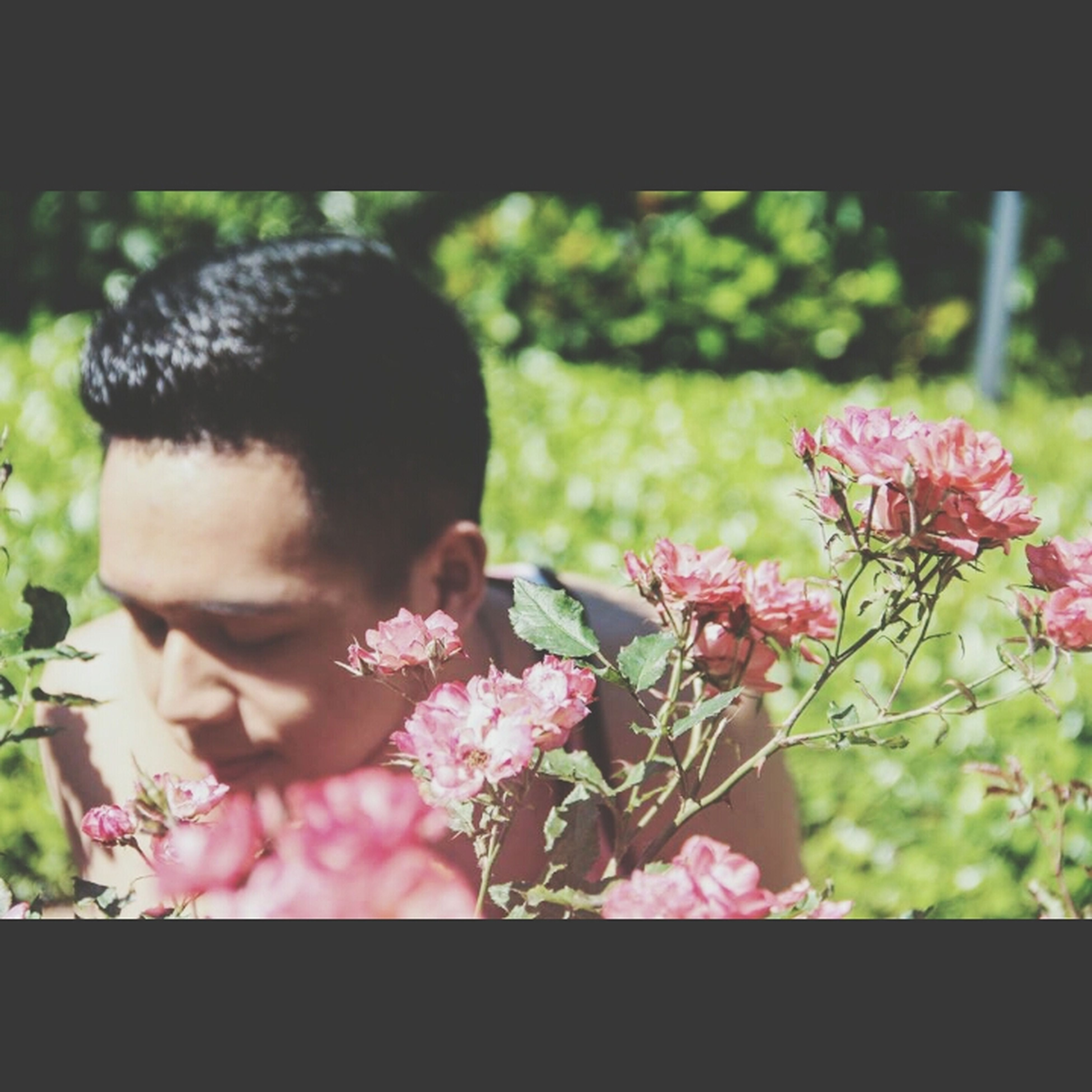 flower, focus on foreground, transfer print, fragility, lifestyles, childhood, growth, auto post production filter, leisure activity, freshness, plant, park - man made space, girls, close-up, person, elementary age, pink color, nature
