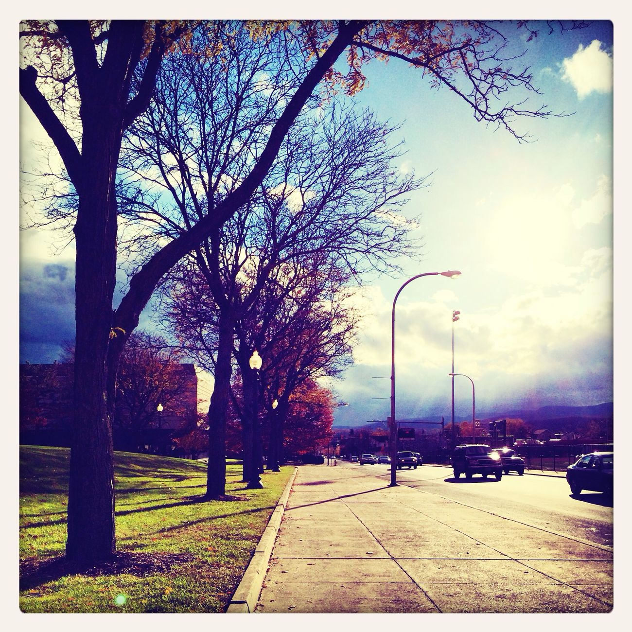 Walking home was nice today :-) Outdoors Autumn Fall Sunny Day