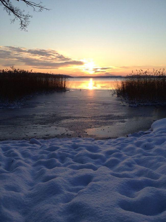 Sunrise On Christmas