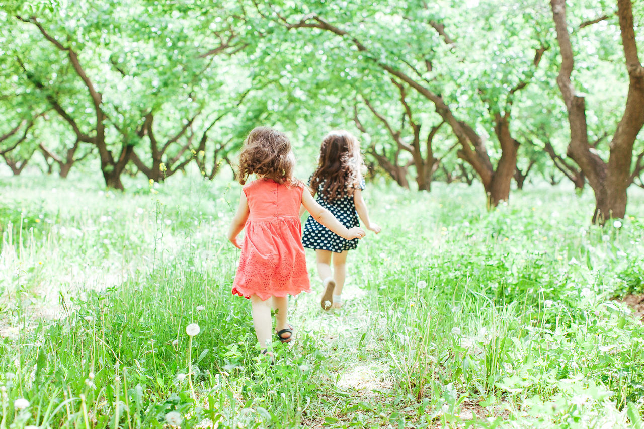 Child Childhood Forest Friendship Fun Girls Grass Nature Outdoors Running Sister Togetherness Tree Two People